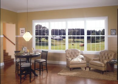 double hung windows in detroit